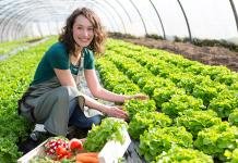 14 gazte enpresa-proiektuak nekazaritza-sektorean